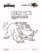 Bear Owl Coloring Page Fact