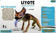 Liyote