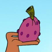 Toot Fruit