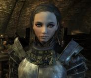 Fayre Blade Armor