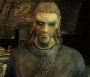 Finn Morrowind Remastered