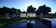 S9 - Dolphin
