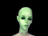 PT Kepler 22b