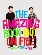 http://the-dan-and-phil.wikia