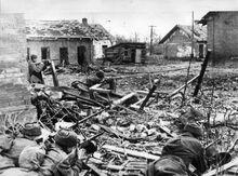 StalingradRus