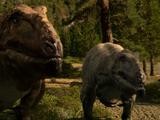 Carcharodontosaurus Pair