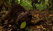 Fallen tarascosaur
