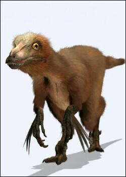 File:American Troodon.jpg