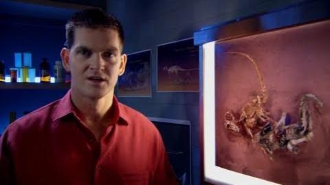 Scott Sampson - Fighting Dinosaurs Fossil (Dinosaur Planet White Tip's Journey)