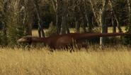 Troodon satlking 2