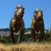 Daspletosaurus (2)