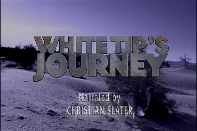 File:White Tip's Journey.png