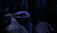 Alvarezsaurus killing Saltasaurus