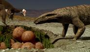 Alvarezsaurus' and Notosuchus