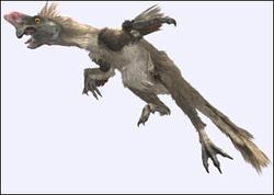 File:Oviraptor.jpg