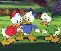 Donald's nephews(2)
