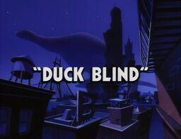 Title-DuckBlind