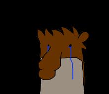 Rygbucryn