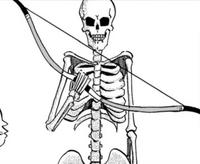 Boneman s First Weapon