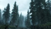 Falkreath Hold