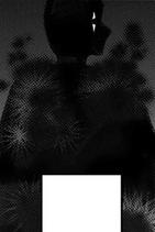 Dyrhygma (Manga)