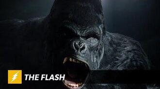 The Flash - Grodd Lives Trailer
