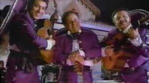PB Max Commercial 1991