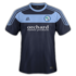 Forfar Athletic 2016-17 home