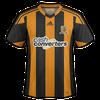 Hull City 2013–14 home