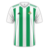 Real Betis 2017-18 home