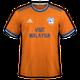 Cardiff City 2019-20 away