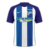 Hertha 2016–17 home