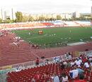 Karađorđe Stadium