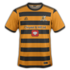 Alloa Athletic 2016-17 home