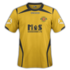 Annan Athletic 2016-17 home