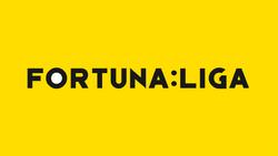 Czech First League Fortuna logo