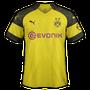 Borussia Dortmund 2018-19 home