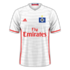 Hamburger 2016–17 home