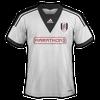 Fulham 2013–14 home