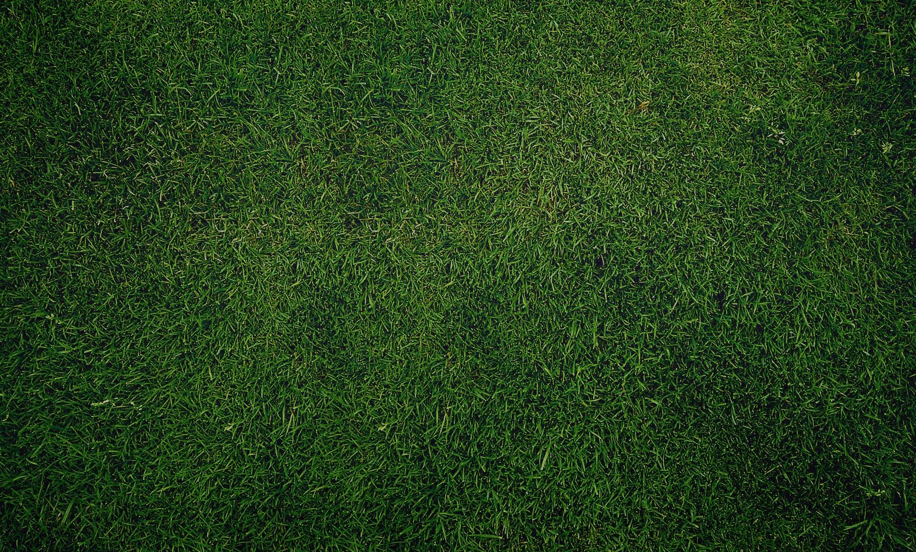 Image - Dark green grass texture-other.jpg | Football Wiki ...