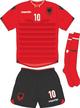 Albania Euro 2016 home kit