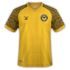 Newport County 2019-20 home