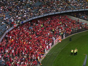 Adelaide United Fans (395036058)