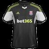 Stoke City 2013–14 away