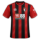 Bournemouth 2019-20 home