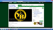 Article BSC Young Boys The Football Database Wiki 001