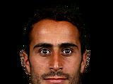 Tarek Elrich