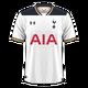 Tottenham Hotspur 2016-17 home