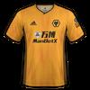 Wolverhampton Wanderers 2019-20 home