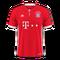 Bayern Munich 2016–17 home